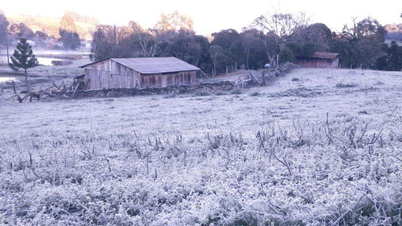 Temperaturas abaixo de zero e neve no sul do Brasil. Veja vídeos