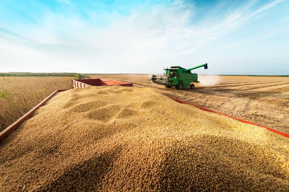 EXPLOSÃO DO AGRO: Produtores de soja já comercializam a safra de 2022