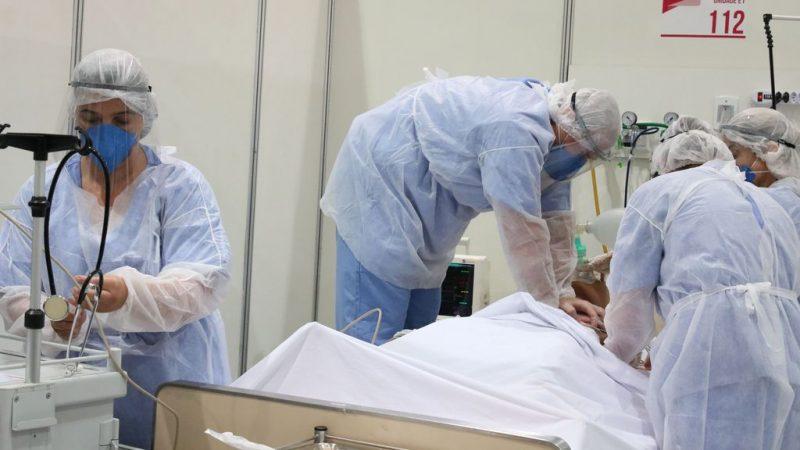 Butantan pede autorização a Anvisa para testar soro de cavalo contra COVID em Humanos