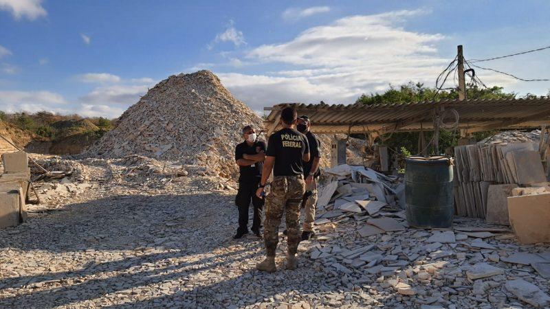 Brasil tenta repatriar fóssil de US$ 150 mil traficado para França
