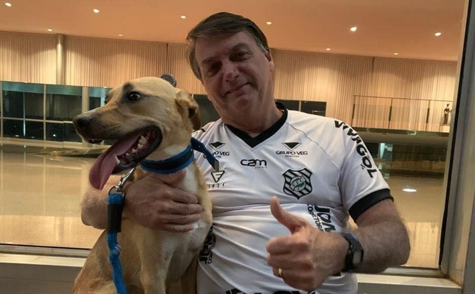 """Bolsonaro manda recado a Doria; """"vacina obrigatória só em cachorro"""""""