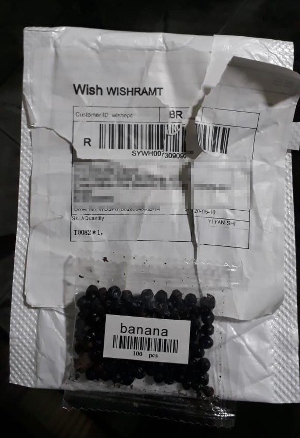 """Moradora do RN recebe pacote com sementes misteriosas da China: """"Nem abri""""; pacote tinha escrito 'banana'"""