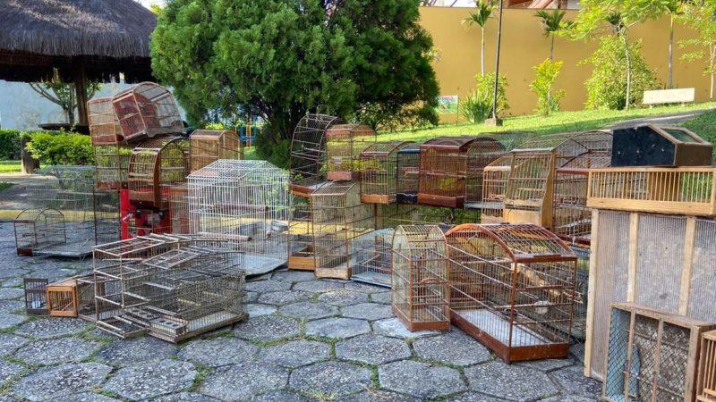PF prende traficantes de animais silvestres na Operação Urutau 2