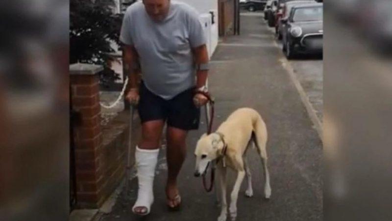 Homem manco gasta R$ 2 mil no veterinário e descobre que cão o imitava