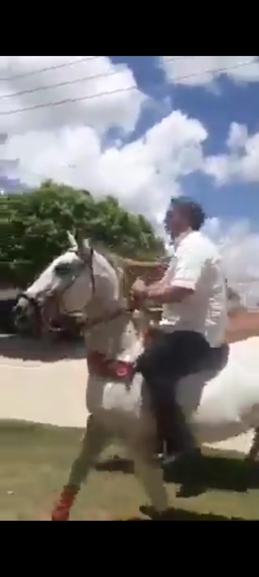 """Presidente Bolsonaro pega cavalo emprestado de um vaqueiro e ele grita; """"Bolsonaro gosta de aventura"""", VEJA O VÍDEO"""