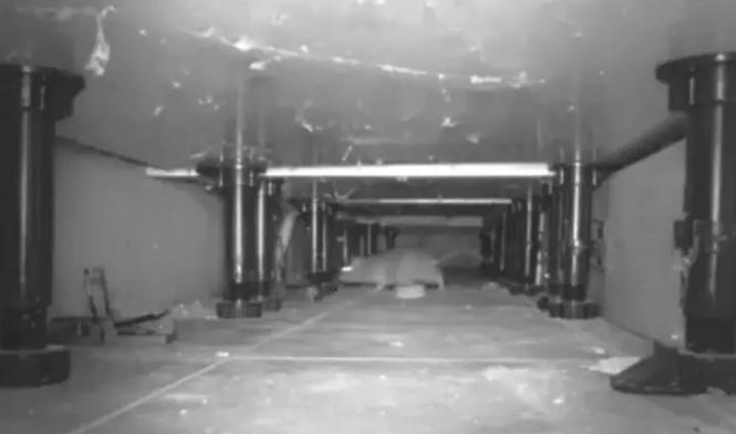 Ratos infestam áreas residenciais durante o lockdown em Londres