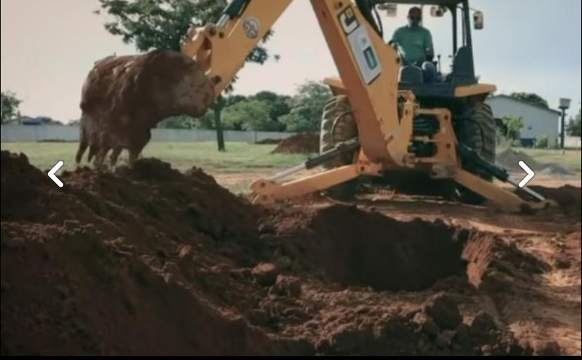 Prefeitura aterroriza população cavando covas em cemitério para campanha contra Covid-19; VEJA VÍDEO