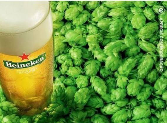 Heineken adere ao 'Dia sem Carne' e pecuaristas rebatem com o dia do 'Churrasco sem Heineken'