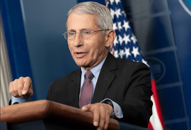 Senador pede investigação de Fauci por 'mentir' sobre investimentos a estudos com coronavírus