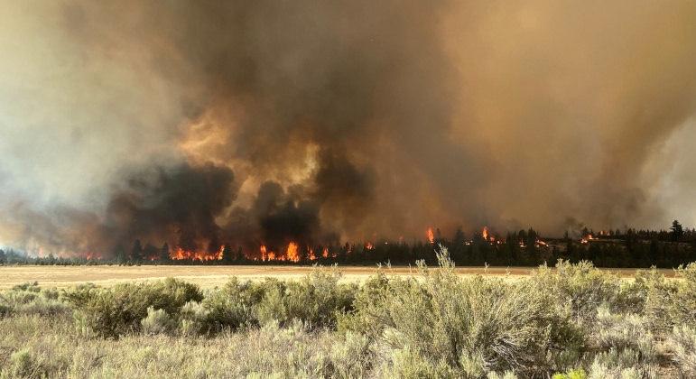 DEVASTAÇÃO: Grande incêndio florestal cresce nos EUA e desaloja população
