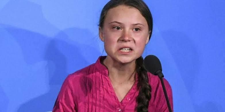No Senado, Greta ataca o governo e fala em 'destruição da Amazônia'