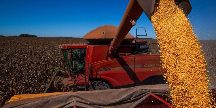 Exportação do agronegócio do Brasil tem recorde para agosto